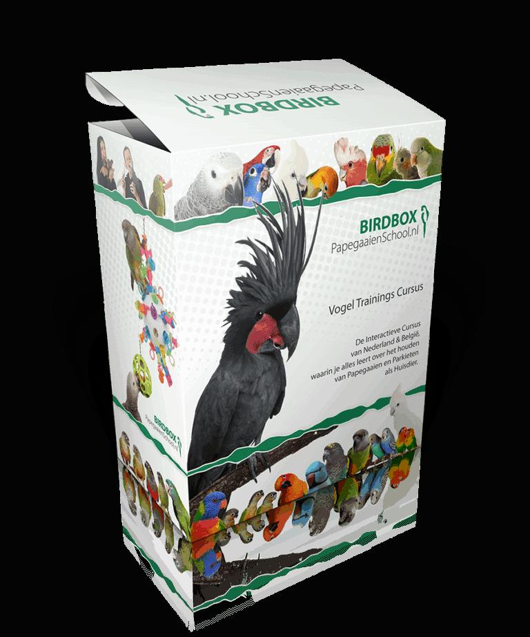 Papegaaienschool: Birdbox Cursus voor uw papegaai of parkiet
