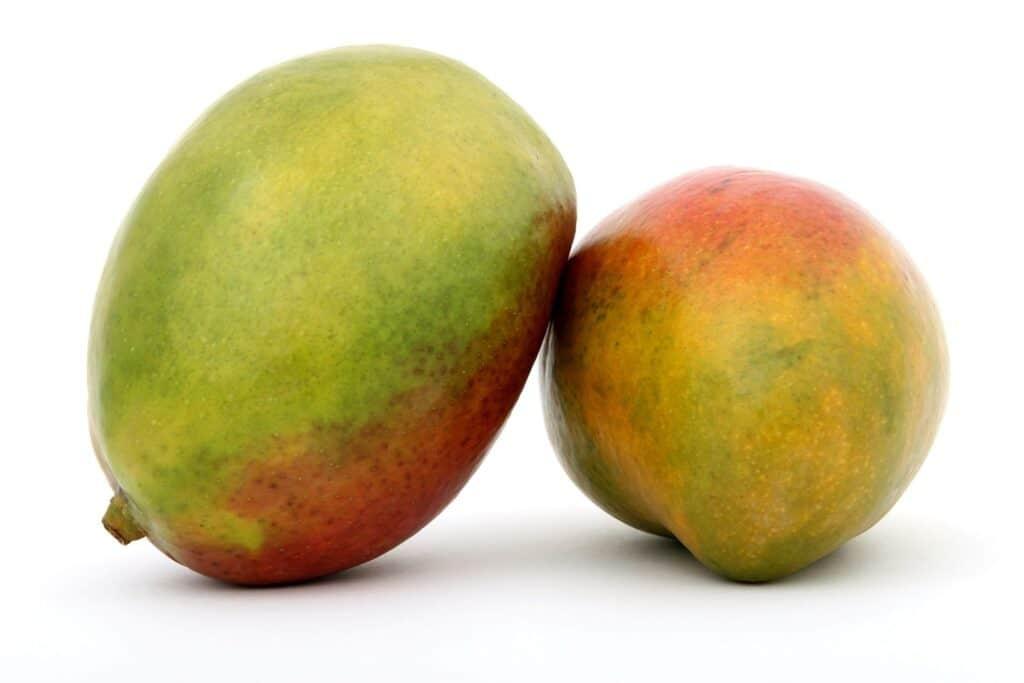 mango voor valkparkiet